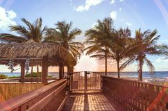Gazebo bar surrounded by palm trees in a beach of Miami Royalty Free Stock Photography