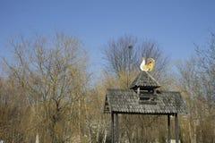 Gazebo de madera del tejado y un gallo Imágenes de archivo libres de regalías