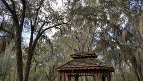 Gazebo delle querce di Souther Fotografia Stock Libera da Diritti