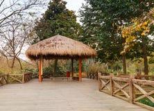 Gazebo di legno del cinese tradizionale e di via Immagine Stock Libera da Diritti