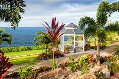 Gazebo för strand för nani för Hawaii stor öla I Fotografering för Bildbyråer