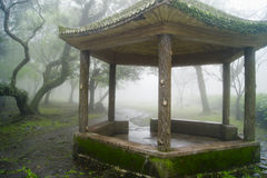 The gazebo in fog. Stock Photos