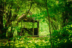 Gazebo in green spring garden park. Old wooden gazebo in green garden park forest. Garden pergola with forest in background Stock Image