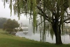 Gazebo i jezioro w wczesnym poranku zaparowywamy Zdjęcie Stock