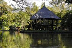 Gazebo i rainforesten vid behållaren royaltyfria foton