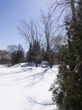Gazebo i vinter Arkivfoton