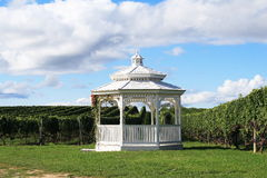 Gazebo II de vigne Photos stock