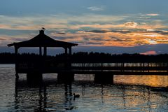 Gazebo in Lake with Mallard Duck in Water. At Sunset Stock Photos