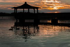 Gazebo in Lake with Mallard Ducks in Water. At Sunset Royalty Free Stock Photos