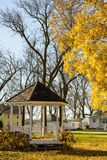 Gazebo and Maple Tree with fallen leaves Royalty Free Stock Photo