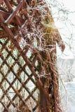 Gazebo met een haan op het dak Royalty-vrije Stock Fotografie