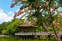 Gazebo in Nara Royalty Free Stock Images