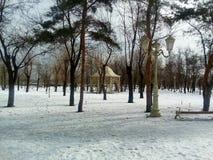 Gazebo nel parco di inverno Fotografia Stock Libera da Diritti