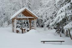 Gazebo onder de sneeuw, pijnboombomen in de rug Royalty-vrije Stock Fotografie