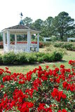 Gazebo in Rose Garden Stock Photo