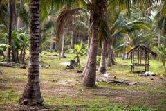 Gazebo in a Rural Area of Koh Samui, Thailand. Stock Photo