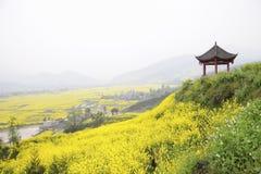 Gazebo surveying a landscape of rape flowers Stock Images