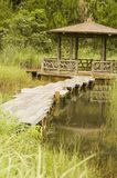 Gazebo in swamp. A view of a gazebo and wooden walkway across a swampy area in a wetlands park Stock Photography