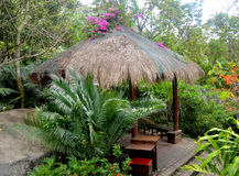 Gazebo to relax in the jungle dozhdevuh Yanoda, China Royalty Free Stock Images