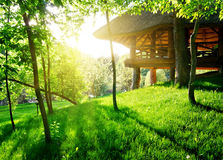 Gazebo among the trees. Gazebo among the green trees in sunny day Stock Images