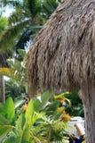 Gazebo on tropical beach Key Largo, Florida Stock Photos