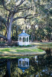Gazebo Under Spanish Moss Draped Oak Stock Photos