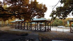 Gazebo w jesień parku Zdjęcia Stock