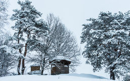 Gazebo winter Stock Photography