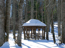 Gazebo in Winter Forest Royalty Free Stock Photography