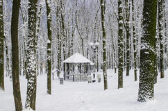 Gazebo in a wooded area a snowy winter in calm. Weather Royalty Free Stock Images
