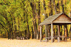 Gazebo in the woods Stock Photography