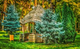 Gazebo in the woods. Wooden gazebo in the woods with pine Royalty Free Stock Image