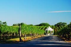 A Gazebo tucked romantically in a vineyard. A Gazebo is tucked romantically in a vineyard on the North Fork of Long Island stock photos