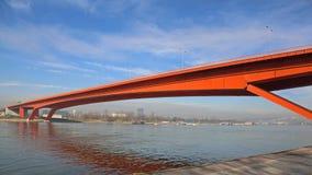 Gazela Bridge Belgrade Stock Image