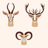 Gazelle décorative, cerf commun, bande dessinée tirée par la main graphique de vecteur de RAM Photo stock