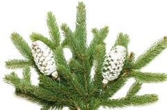 gałęziasty szyszkowy futerka zabawki drzewo Fotografia Stock