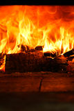 Gazing в пламена Стоковые Изображения