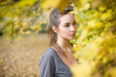 Gazing autumn beauty Royalty Free Stock Images