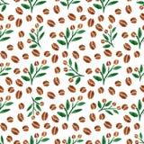 Gałązki kawa Akwarela bezszwowy wzór z kawy gałąź z liśćmi również zwrócić corel ilustracji wektora Obrazy Stock