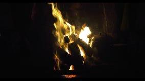 Gazon de tourbe brûlant dans un feu ouvert de marais en Irlande banque de vidéos