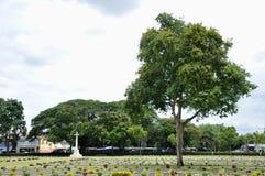 Gazon in een begraafplaats met grafstenen Royalty-vrije Stock Afbeelding