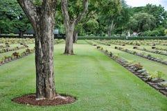 Gazon in een begraafplaats met grafstenen Stock Foto