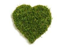 gazon formé par pelouse de coeur Photographie stock libre de droits