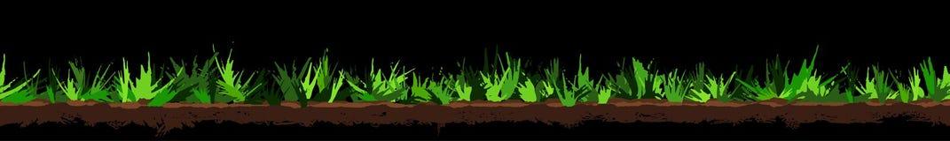 Gazon granicy Trawy rośliny bezszwowa panorama Boczny widok, odosobniony na czarnym tle royalty ilustracja