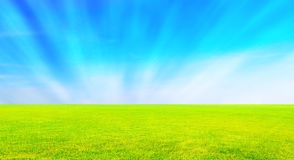 Gazon met hemel stock afbeelding