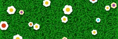 Gazon trawa z kwiatami ilustracji