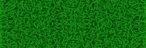 Gazon trawy szeroki tło royalty ilustracja