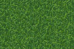 Gazon trawy tekstura dla tła i wzór wektor royalty ilustracja