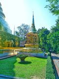 Gazon wśród Wata Phra Singh Tajlandia obraz royalty free