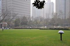 Gazon w miasto parku Zdjęcie Stock